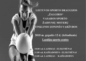 Rytoj moterų tinklinio varžybos Lazdijų sporto centre